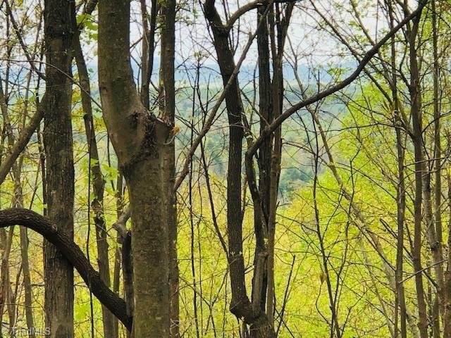 Just minutes from Mount Airy.  Build your dream home on this tract of land.  Enjoy the amazing views!