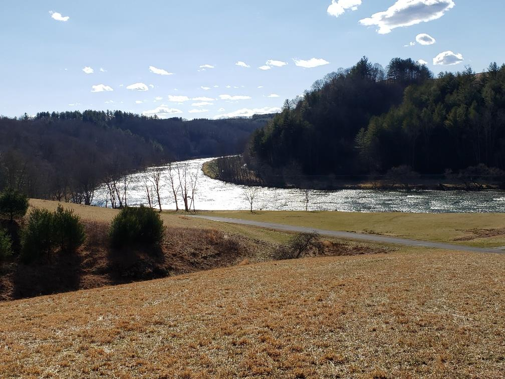Have you always wanted to own a property on the New River but couldn't find what you were looking for? You have found it now! River Meadows development is a 100 acre residential development located on the New River along the Virginia-North Carolina line. With spectacular views of the New River and the surrounding mountains, this property offers an excellent opportunity for your dream vacation home or your permanent residence. Lots range in size from one to seven acres and share in 26.44 acres of common area on the New River. Located within the common area is a beautiful pavilion with rough-hewn beams, an exterior river stone fireplace, a fire pit with a flagstone walkway and sitting area, a kitchen facility, restrooms and an observation deck. All interior roads are paved, lots are serviced by underground power and lots have access to public water. An existing Declaration protects the development and establishes guidelines protecting your investment.
