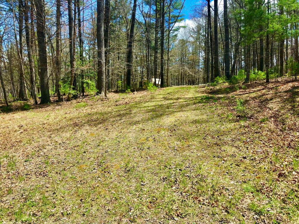 This gently rolling/level homesite offers well, septic, and electric already in place. The Trout Run subdivision offers a common area with access to Crooked Creek, a stocked trout stream. The lot is partially wooded and partially cleared, with very little undergrowth, making it perfect for nature walks. Its in a secluded area, perfect for a mountain getaway or a permanent home. There is a camper located on the property. Buyers can decide if they wish to keep it there or have the seller remove it. Campers are permitted, but permanent structures must be stick built, or modular (No single or doublewides). This mountain oasis is seems remote, but still convenient to Fancy Gap, I77, The Blue Ridge Pkwy, Mt. Airy NC, or Galax VA. There are local restaurants, stores, potteries, antique stores and so much more within a 10 min drive. Come enjoy Mountain life part-time, or become a full time member of our community. You will never want to leave. Easement on survey no longer legally active.