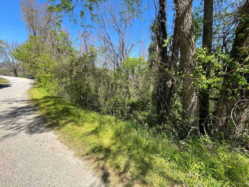 Building lot for sale in the Town of Narrows, VA. Property for sale is .377 acres of wooded land with public utilities. Located in peaceful Giles County, with close proximity to the New River and all the recreational activities SWVA has to offer!