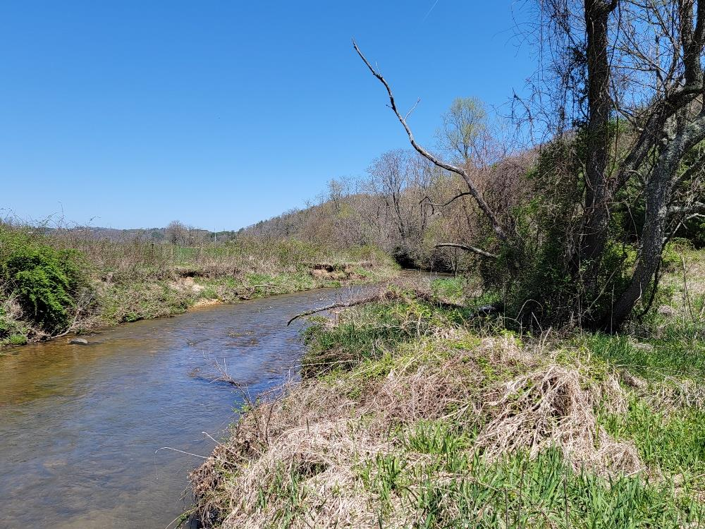 29+ ACRES WITH FRONTAGE ON A STOCK TROUT STREAM! BEAUTIFUL BUILDING SITES TO BUILD THAT NEW CABIN ON OVERLOOKING CROOKED CREEK. MIXTURE OF OPEN AND WOODED LAND WITH A POND AND TRAILS  JUST OUTSIDE  GALAX WITH CONVENIENCE TO I-77. WITHIN MINUTES TO CROOKED CREEK WILDLIFE MANAGEMENT AREA, NEW RIVER, NEW RIVER TRAIL AND BLUE RIDGE PARKWAY,  ADDITIONAL 28+ ACRES AVAILABLE.