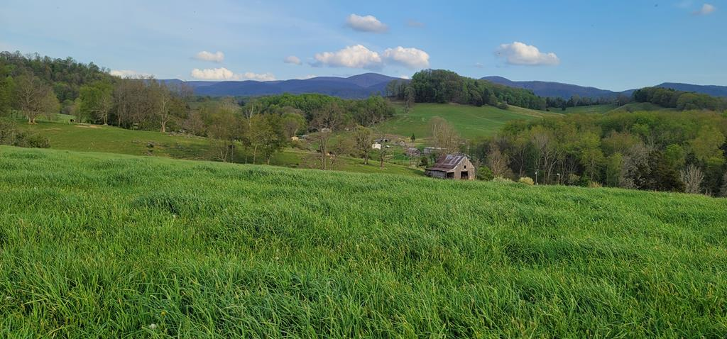 Over 50 acres with water and fencing.  Multiple home sites with gorgeous views and 20+ acres of hay fields!  Seller would like to retain the right of the first Hay cut however this is negotiable.