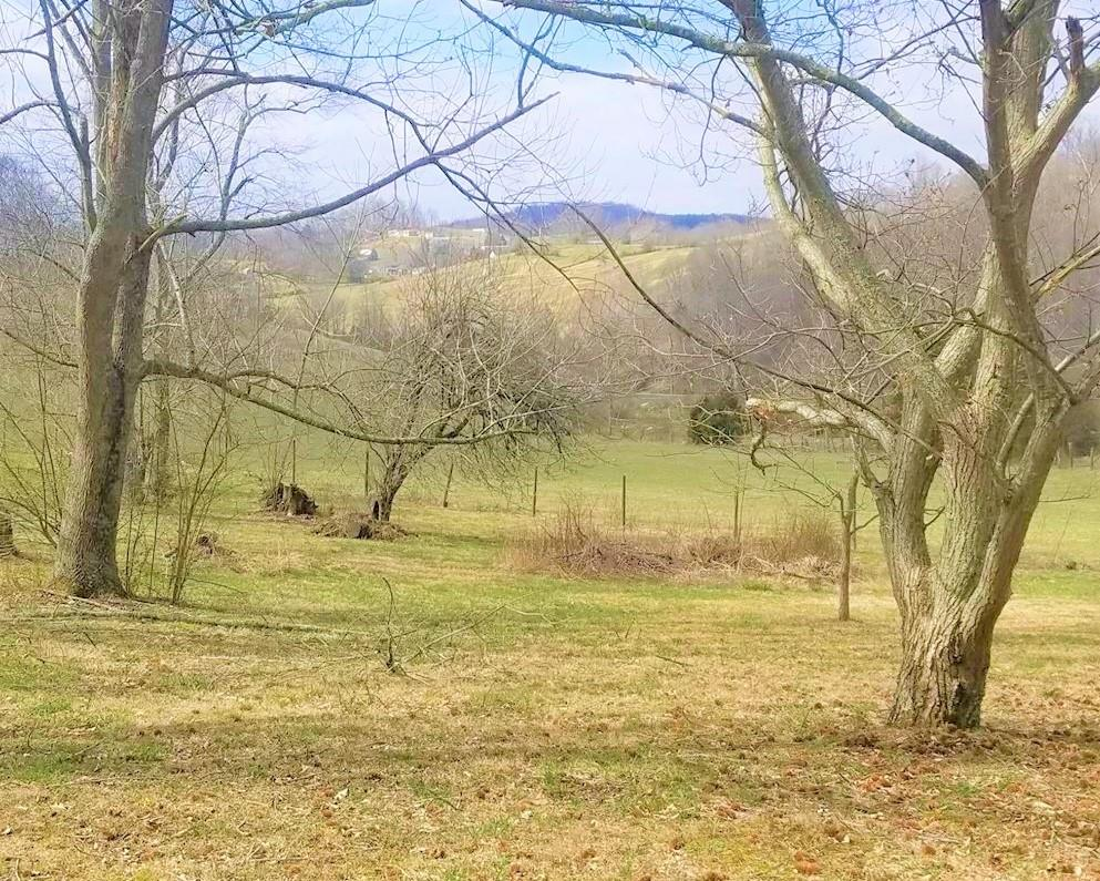 Don't miss out on this one!  Lots 22-23-24 & 25, totaling over an acre, in town but just outside town limits.  Electric - Public Water - Public Sewer are available buyer to verify.  Come build your dream home, modular, or doublewide.  Subject to zoning.