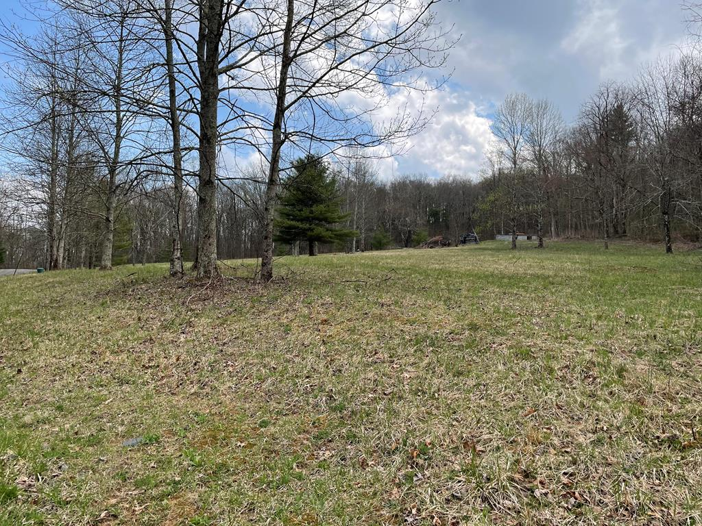 Check this one out! This nice 3.5 +/- acre lot is in close proximity to the Blue Ridge Parkway and would be a great place to build your log home! This lot has electricity available and a well already in place!