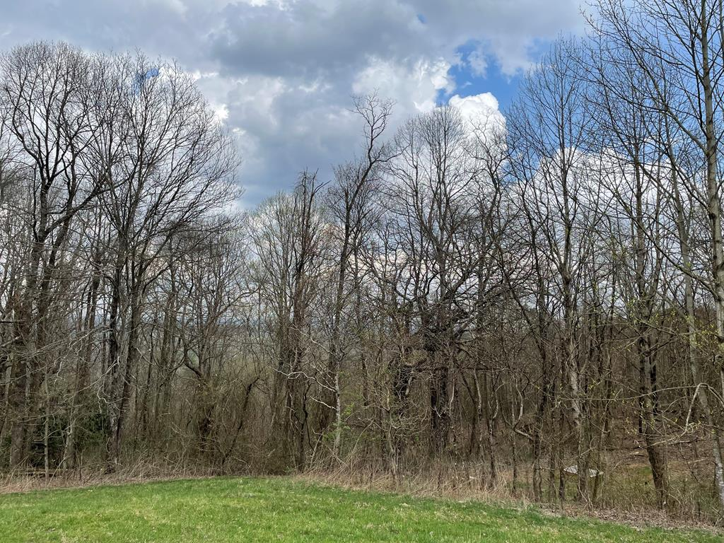 Check this one out! Nice 2.7 acre tract in close proximity to the Blue Ridge Parkway! This secluded lot has the potential for long-range views and would make a great place to build your log home!