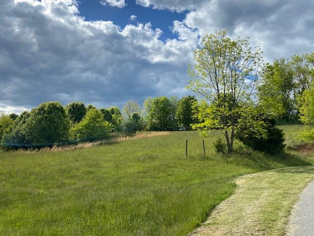 Build your dream home in the beautiful Wytheview Subdivision where the views are magnificent and the location to downtown is convenient .  This .89 ac lot is priced under tax assessment and needs a home on it!  Call today for more information.  Public water is also available so no well is necessary.