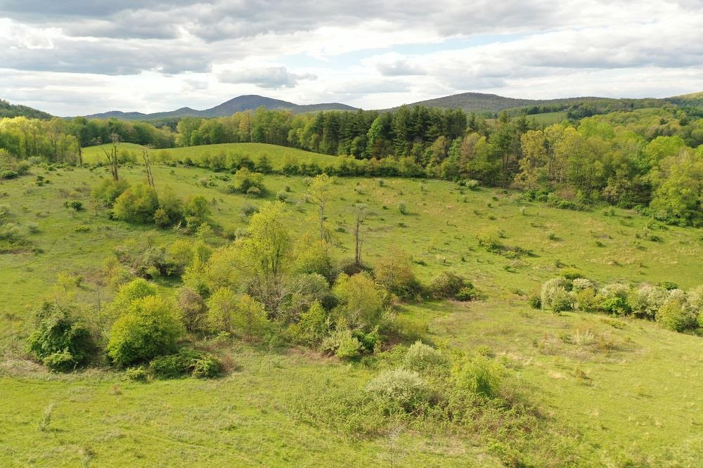 This 20 acre site close to Rt. 58, Downtown Meadows of Dan and the Blue Ridge Parkway is suited for several uses. The gently rolling terrain has great spots for building a home, or with some minor clearing could work well for orchard or beautiful pastureland. The property perimeter is mostly fenced and surrounded by mature trees for privacy but still has nice views. There are 2 springs on the property and the east boundary runs to the center of a nice stream. The property is accessible via a deeded Right-of-way off of Burnett Road SW. Showings are by appointment only.