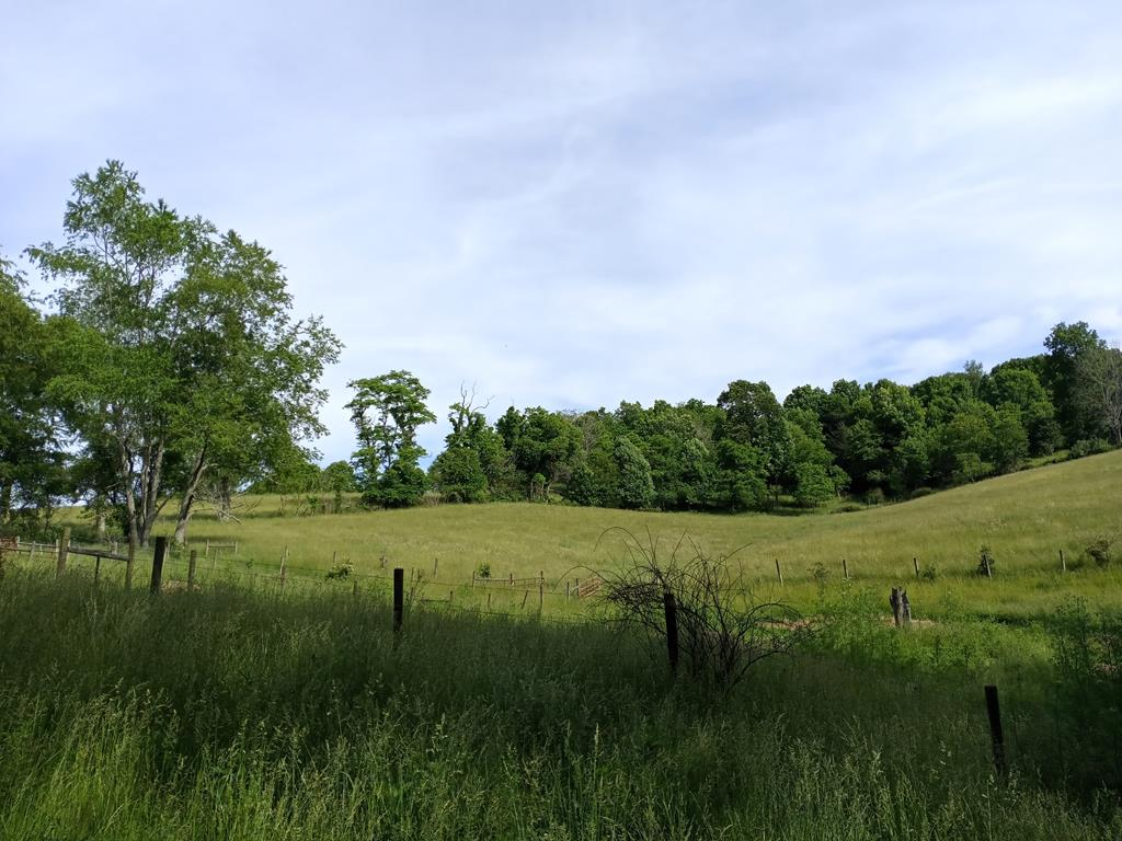 Beautiful pasture land with some woods for shade. Great place for home site or horse farm. A must see.20 plus acres. Lots average in size from 5 acres to 6. Buyer is responsible for all fencing!