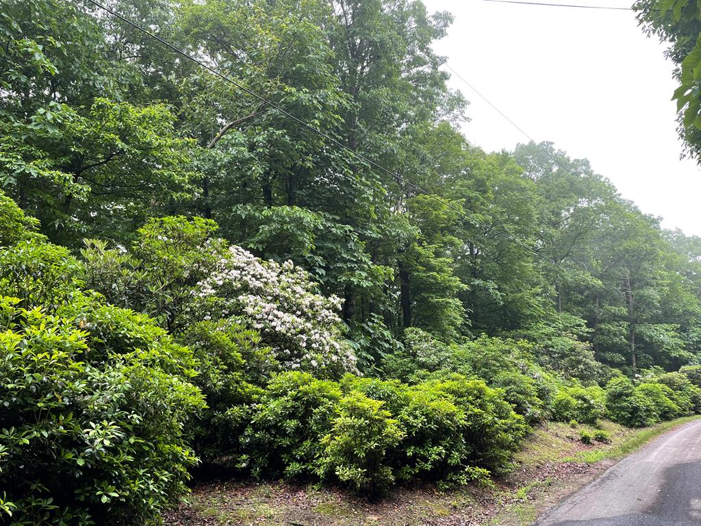 Offering a unique opportunity to purchase a block of 4 beautiful wooded lots in Chalet High, just off the Blue Ridge Parkway.  2 Lots on the left side and 2 lots on the right directly in front of each other!  $59,900 for ALL 4 lots.  Build your home on two lots ( excellent level lots) and have an open wooded view directly in front of you for seclusion and privacy.  2 of the lots overlook the community pond! Chalet High amenities include, summing pool, clubhouse, 2 fishing ponds, tennis courts and playground.  Located just 4 miles off HWY 52 and I-77 for easy access.  HOA fees are $212 per lot PER YEAR and covers community water access, road and common are maintenance.  Low Carroll County taxes of $ 205/annually for all 4 lots.