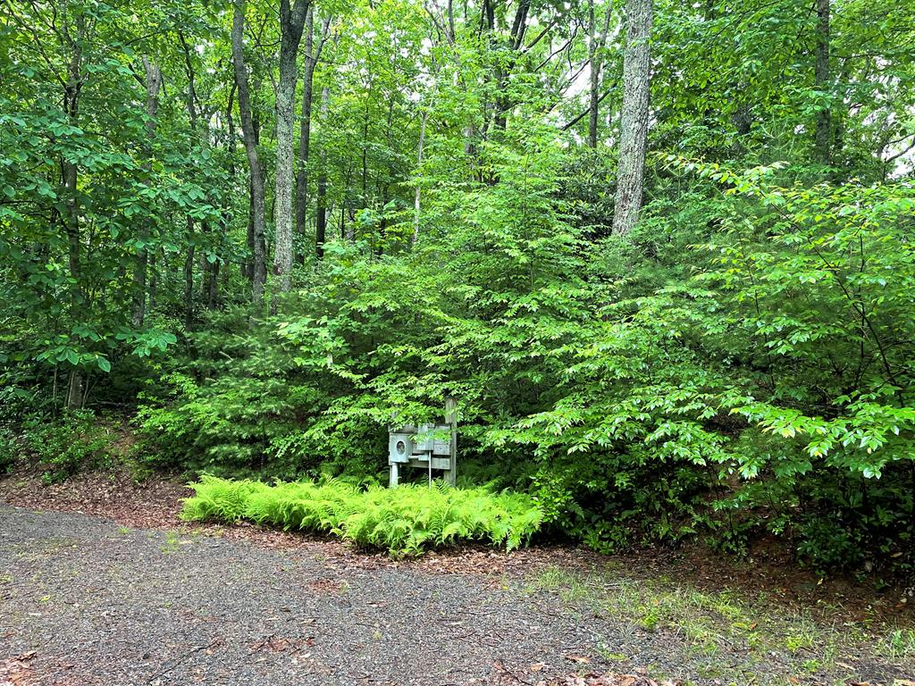 THE BEST OF ALL, these 4 lots are perfect in everyway.  Landscaped by nature with mature hardwoods full of  rhododendrons and ferns , level lots  for building that amazing Mountain cabin you have always wanted...the property back drop is the  Blue Ridge Parkway!  You are just across the   BRP where the Granite Overlook at 3000 elevation views are breathtaking!  Property has electric power and a developed circle driveway just perfect for nestling into the 2.83 acres of lush!  the location is great, 10 mins from the Blue Ridge Mountain Music Center, 3 mins to Fancy Gap shopping and restaurants, 25 mins to Mount Airy and  40 mins to Sparta NC!  Totally private with easy access to I-77 , so 75 mins to Charlotte NC!  Once you are on the property you will want to stay to enjoy local trout fishing, hiking trails and near by golf courses! Use of a common area with picnic tables and nice stream