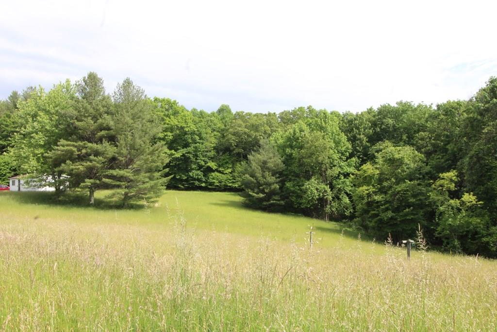11.34+/- buildable mostly wooded gently sloping acres in Fancy Gap. The land is being sold as a whole but is five tracts being sold as one. Buyers can keep or sell any portion of the 5 tracts. They have not been combined and still have their own tax parcel numbers.  Open wide existing trail going around the complete perimeter of the property for you to enjoy in all four seasons. Very easy for everyone to easily show this land and see what you are buying. The land is well marked. Beautiful mix of mature trees, lush fern beds and perennials cover the forest floor. There are no restrictions, plenty of wildlife to hunt on your own property. Perfect property to tuck your new home back under the canopy of tall mature trees. Completely private and secluded. Great open pasture at the front of the land for growing a garden, fruit trees, herbs. Live off your own land yet enjoy the proximity to the Blue Ridge Parkway, close to shopping, schools, medical on a State maintained paved road.