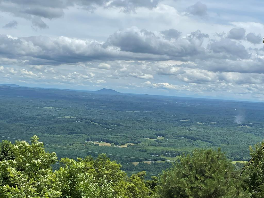Splendid long range Piedmont views overlooking  the Carolinas, just off the Blue Ridge Parkway .  1.09 acres of Hardwoods, Rhododendrons and lush greenery abound!  Come take a look at the property and you will be pleasantly surprised by the land and view.  Great neighborhood with common areas to enjoy with family and friends.