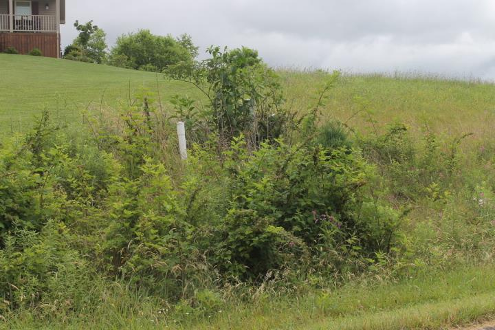 GOOD BUILDING LOT WITH RESTRICTION. LOT IS CONVENIENT TO SHOPPING, SCHOOLS , AND INTERSTATE 81.