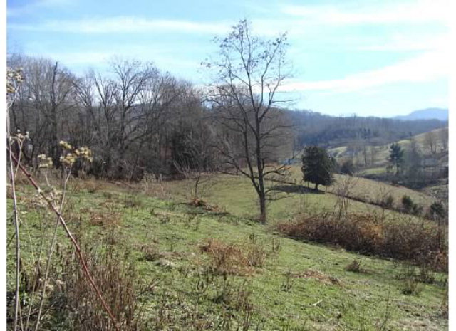 Great track of farm land with river frontage on back side.  Land is rolling and sloping with wonderful mountain views.  90% of grazing land with the balance in the woods. Just outside of the town of Damascus, and less than 15 mins. from Abingdon.  Many home sites that would offer mountain views for your dream home.
