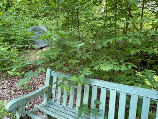 Beautiful lot with 2850 elevation!  Wooded, secluded with CREEK !  Property includes a well, septic and lockable out building 10X14!  This property has the best of Fancy Gap, short drive to Blue Ridge Parkway but close to Fancy Gap and other surrounding areas.  Nice driveway to the top already in place.  Very quiet area nestled just off the parkway!