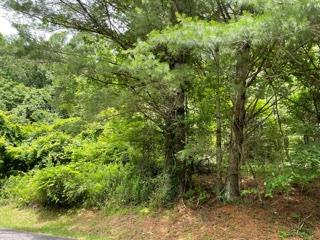 Beautiful lot in Cascade Mountain Resort, gated community with lots  of amenities, new swimming pool area, fishing ponds, clubhouse, tennis courts etc.  Come relax in a mountain retreat along the Blue Ridge Mountains.