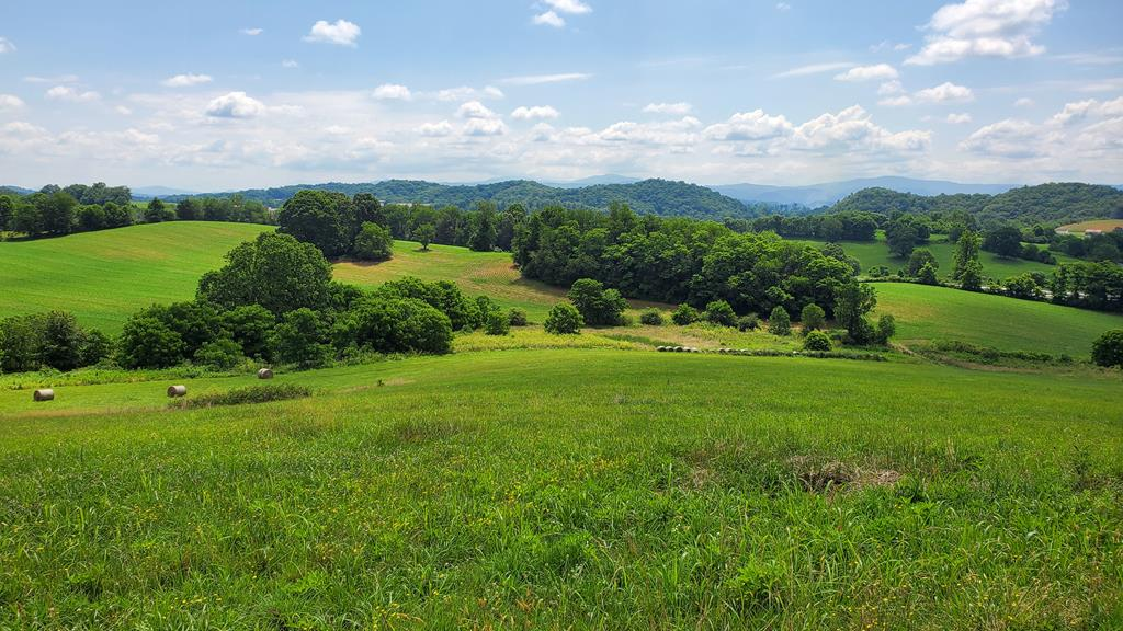 Unique opportunity to purchase approximately 54 acres which will be divided from the original 90 acre tract. Public water and electricity are available. Would make a beautiful horse farm. Property has an elevated, wooded home site, open rolling fields, approx. 50% is tillable. Views of Mt. Rogers and Whitetop Mtn. Sale subject to county approval of the division and recordation of the new survey. Sale subject to farmer harvesting the corn crop in the fall.