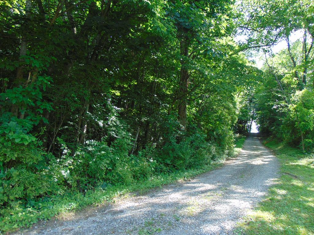 4.43 acres of wooded land offering seclusion, privacy and road frontage conveniently located just a few miles from Wytheville and Rural Retreat. This property is located in the Rural Retreat school division. This 4.43 acres, located in a beautiful country setting, has a copule really nice building sites. Homes are scarace in today's market.  Purchase this property and build your dream home just the way you want it. Call today!
