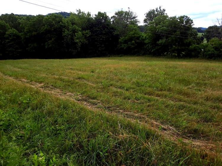 Love the Clinch River? This large lot has over 300 feet of frontage on one of the most pristine rivers in Virginia.. Ideally located between Tazewell and Richlands and suitable for building your home. Consider joining the Country Club for golf, swimming and camaraderie. Lots  on the Clinch with location and this quality are very hard to obtain.