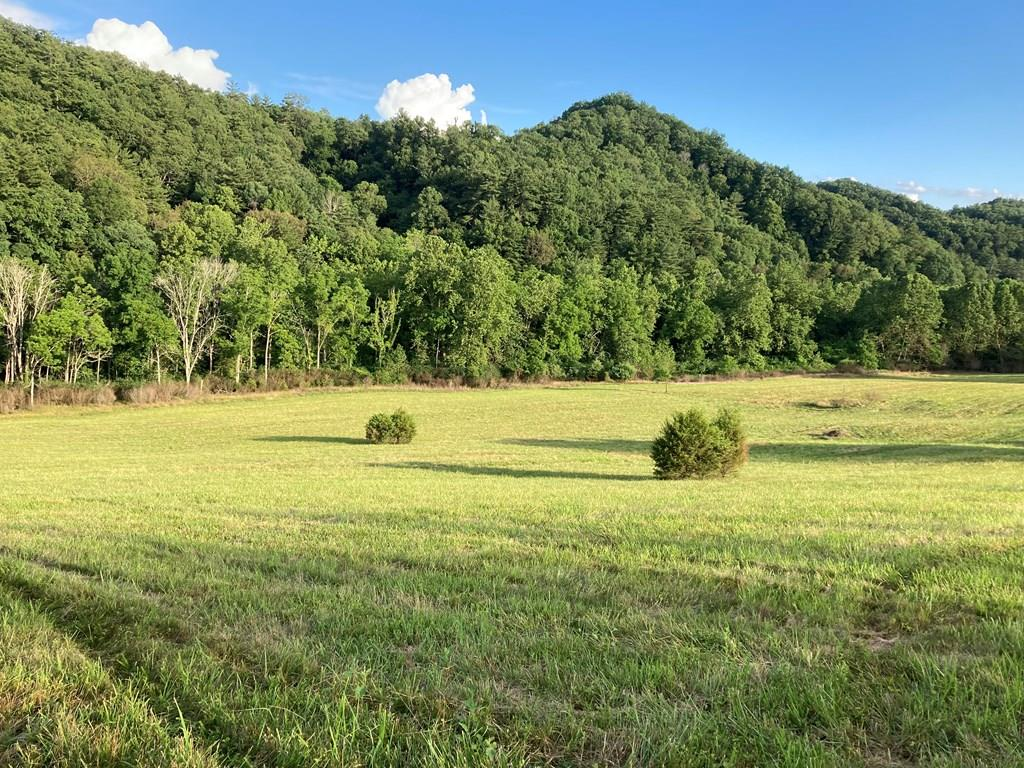 Endless possibilities with this beautiful piece of property!  Located only 3 miles from South Holston Lake, less than 2 miles to Virginia Creeper Trail,  yet only 3 miles to exit 17 I-81 and Abingdon.  Excellent school district including award winning Watauga Elementary School.  3 tracts of land being sold together.  One tract is .83 acres with 145' of road frontage to Green Springs Road.  The other 2 lots each have 79' of road frontage to Green Springs, opening up to 6.92 acres and 9.72 acres respectively.  Sell the .83 acre lot as a home site, or build your own.  The other two could be sold together, or as 2 separate mini-farms.  Or, keep it all to yourself and build your dream home and raise your own livestock.  There is a small brook/stream located at the back of the property.  We haven't even mentioned the views which are stunning.  Make an appointment to see this property before it is gone!