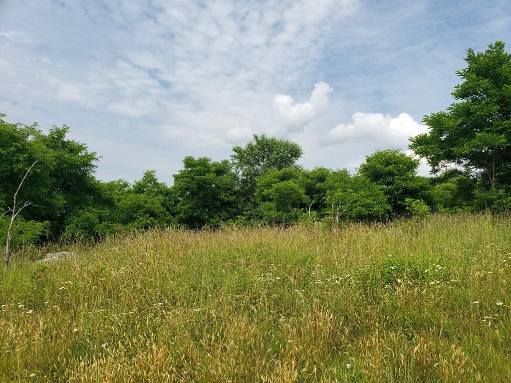 6.22 Acres w/ Fantastic Long Range Views. Southwestern exposure with amazing views and moderate topography. There is a well in place and with the clearing of some smaller trees, this property is ready for you to build your dream home. This community features approx 300 acres of common area, paved roads and underground power and phone lines. This property is located in close proxinmity to the New River and all of the recreational opportunities Grayson County has to provide.