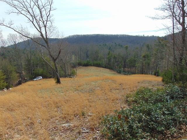 Private, paved, gated, views, very nice!  This lot lies behind a section of trees, gently sloping upwards with an open grassy area cleared in the center where you can place your new home for the best view, out of view!  Lot #2 gives way to easy access in & out of the subdivision year 'round.  Pine Mountain has an excellent road system & this lot has a great shape to allow building with plenty of buffer between lots.  The driveway is in place, there is a jaunty little stream, boulders and views that will never let you forget your in the mountains.  Underground power & telephone are already in place & while very private, giving your a feeling of seclusion you'll know you're in a community by the condition of the entrance & private, paved roads.  Protect your investment in a mountain home at Pine Mountain, a lightly restricted, gated, mountain community of 14 lots, 13 greater than 5 acres.