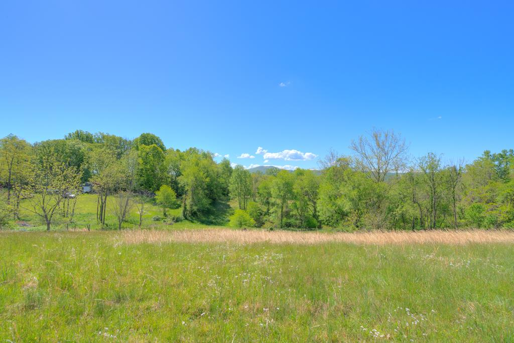 What a view! Standing at the top of this property, you have a beautiful view! Gentle rolling land with a great building site. Doublewide homes are permitted.