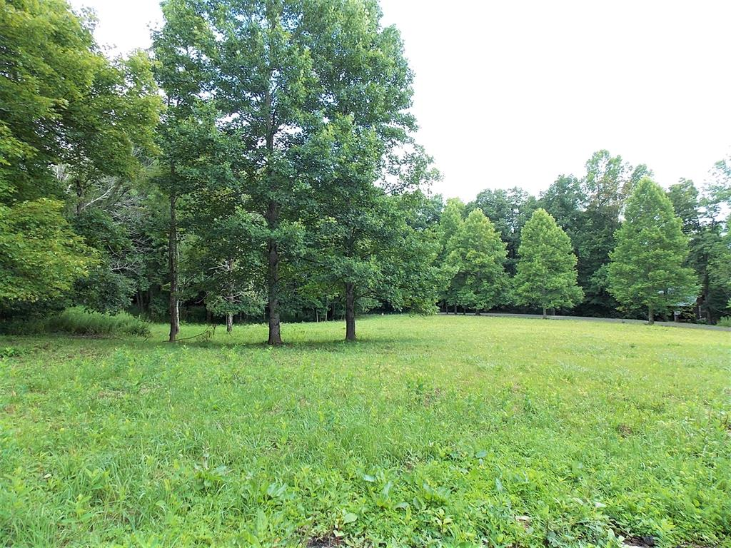 This 2.456 acre tract is located in Groundhog Mountain Retreat, a log cabin development just off the Blue Ridge Parkway! The owner has already paid the expense of installing a 23 x 39 crawlspace type foundation, a roughed in driveway, a septic system which is already piped to the foundation, and a water line from the community water system is installed approximately 50 feet from the foundation! Other features include nice road frontage on Retreat Road, mostly open land with the balance wooded, and a great country location just off the Blue Ridge Parkway!
