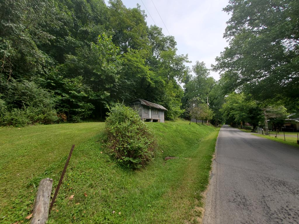 This is a great recreational building lot across from and overlooking the North Fork of Holston River!  This property offers nice road frontage and includes a cozy little outbuilding that could potentially be renovated into a hunting cabin!  There is ample room on the property to construct your country cottage if you prefer!  There is a partial septic system on the property that was installed some time ago by a former owner. This property is only minutes from downtown Historic Abingdon, I-81 Access, and local recreational activities and amenities!