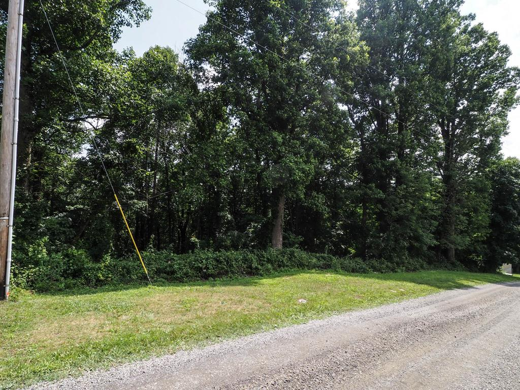 Located in the Wooded Acres Subdivision not far from the Blue Ridge Parkway! This 1.42+/- acre lot would make a great setting  with possible long-range mountain views for your full time home or a nice place to park a camper!  Come relax and enjoy the Cool Mountain Air with No Restrictions!