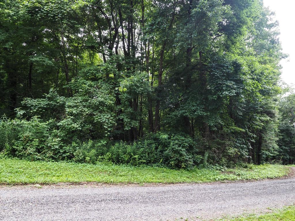 Located in the Wooded Acres Subdivision not far from the Blue Ridge Parkway! This 0.31+/- acre lot would make a great setting  with possible long-range mountain views for your full time home or a nice place to park a camper!  Road frontage on two sides of the property. Come relax and enjoy the Cool Mountain Air with No Restrictions!