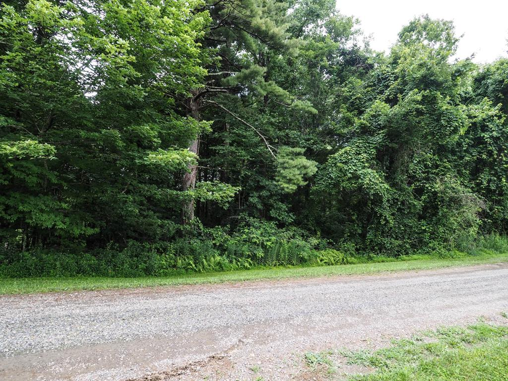 Located in the Wooded Acres Subdivision not far from the Blue Ridge Parkway! This 0.32+/- acre lot would make a great setting  with possible long-range mountain views for your full time home or a nice place to park a camper!  Come relax and enjoy the Cool Mountain Air with No Restrictions!