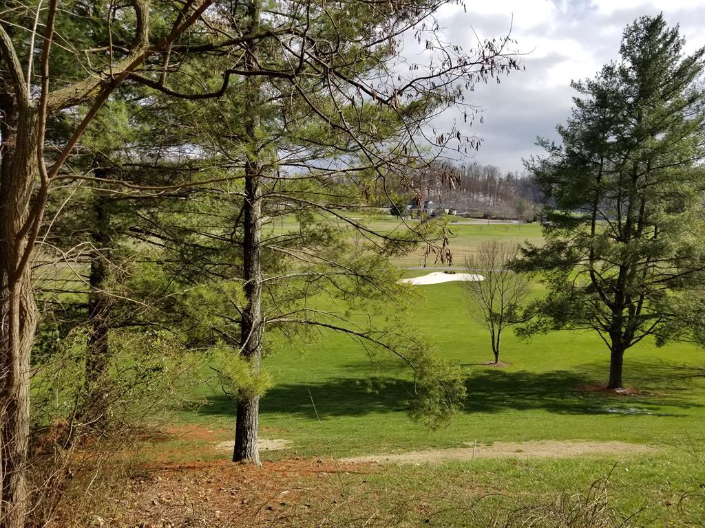 Wooded cul-de-sac lot located in Fox Pointe Subdivision. Beautiful view of the Glenrochie Golf Course and it's 14th hole.