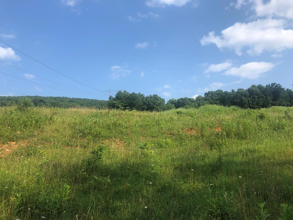 29.4 Acres of unrestricted land in Wythe County.