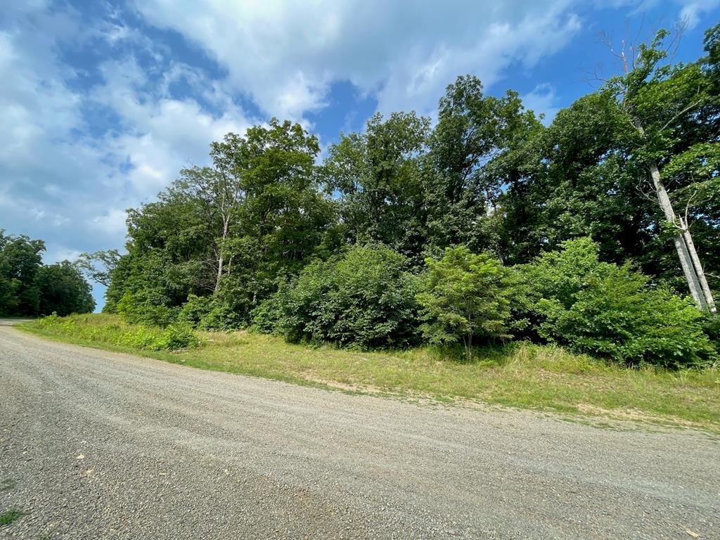 4.32 acres with a Piedmont View lot in Seven Springs Development. Perfect place to build on a private road off the Blue Ridge Parkway. Restriction and yearly road dues. Located only 7 miles to Hwy 52 and I-77 in Fancy Gap VA.