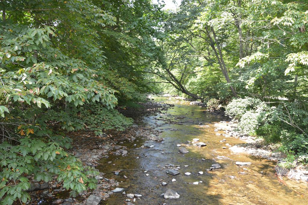 Beautiful piece of Mountain Property in the Southwest Mountains of Virginia. Grayson County. This 17.74 ac+/- boarders Big Wilson Creek, a native & stocked Trout Stream. Over 50% of the property is open and the balance is wooded. Currently has cattle grazing. This is the perfect small farm. Build a Cabin overlooking Big Wilson Creek, bring the animals & go fishing for dinner. Properties like this with Trout stream frontage are hard to find.  Flat part of property is in the 100 year flood plane.  Take a look today.  Close to the Grayson Highlands.