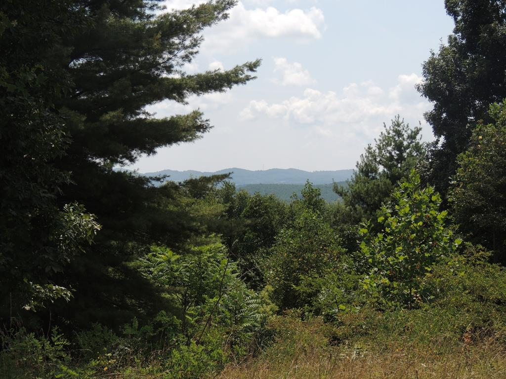 Incredible opportunities await with this 5 acre tract in the Laurel Mountain gated community. A wonderful building site, perfect for your mountain getaway, already exists on the tract. The property is filled with wildlife from squirrel's, wild rabbits and deer  to the occasional bear! all who love the towering trees as much as you will. This property has the highest elevation within the Laurel Mountain Community. Breathtaking Mountain views! Both common areas have water access. Fishing and kayaking are just the beginning! The tract has been perked for a three bedroom home. Road maintenance fee is $300 per year and the restrictions are limited. There is a paved road to the lot. Call to set up your visit Today!
