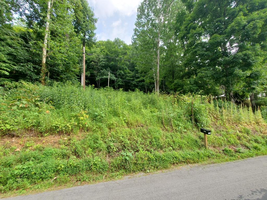 This is a great recreational building lot across from and overlooking the North Fork of Holston River! This property offers road frontage from North Fork River Road. This property is only minutes from downtown Historic Abingdon, I-81 Access, and local recreational activities and amenities!