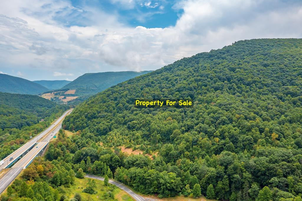 +/-72.5 acres of mountain land just off I-77 in Bland County, VA. This property has creek frontage, ideal for hunting and fishing, riding your ATV's, or for building that small cabin in the woods that you've always wanted. Easy access and a small bridge crossing the creek is already in place. On top of it all, there is even public water availability at the road frontage! Located just on the VA side of East River Mountain in Rocky Gap, VA.