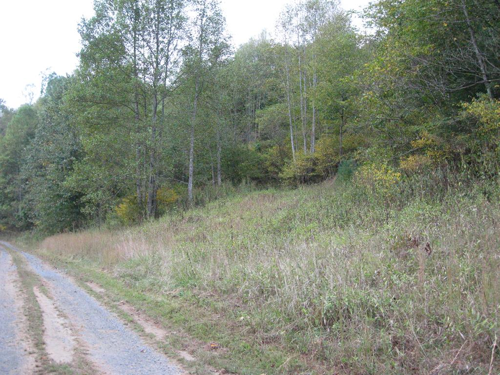 BEAUTIFUL BUILDING LOT ON A WIDE AND BOLD CREEK THAT IS NOT ONLY GREAT FOR FISHING, BUT GREAT FOR TUBING AND KAYAKING AS WELL.  CABIN BUILDING SITE ALREADY CLEARED AND LEVELED WELL ABOVE THE FLOOD PLAIN.  GOOD VIEW OF THE CREEK FROM THE CABIN SITE WITH EASY WALKING ACCESS TO THE WATER.