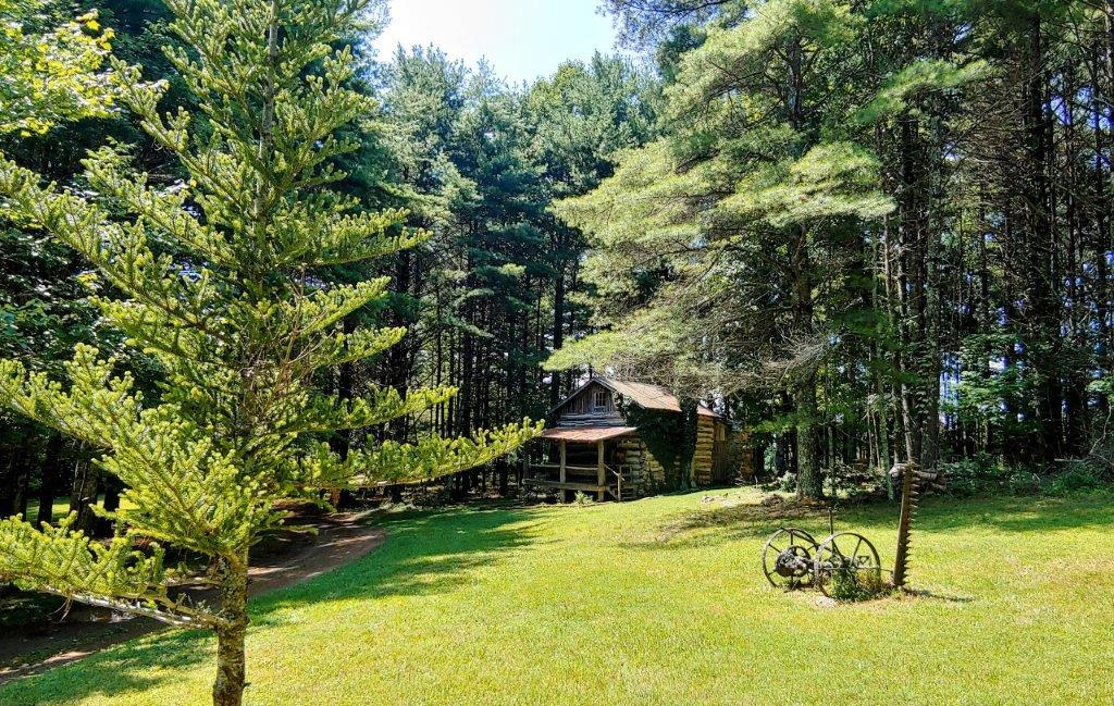 Welcome to Blues Cabin - nestled on 1.35 acres with a beautiful park like setting. Enjoy weekend get togethers at the cabin! You may decide to dress the cabin up some more or continue with it's primitive style. Either way this property is an awesome spot to relax and get away.