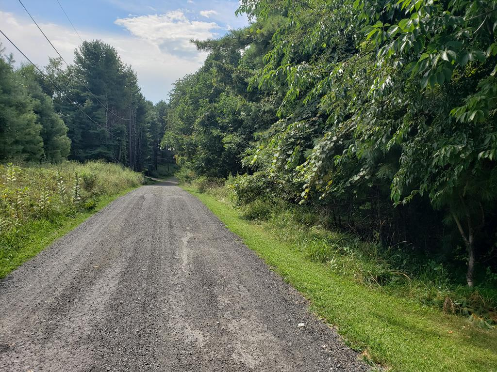 Nice lot to build your mountain get-a-way! Just off Blue Ridge parkway and convenient to Hillsville and Mount Airy.