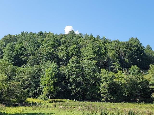 TBD Gem Stream RD, Elk Creek, VA 24326