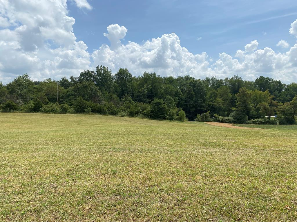 Don't miss out on the opportunity to own this beautiful tract of land visible from I-81 between mile marker 19 & 22 in Abingdon VA. Within minutes of hospital, shopping & the historical, downtown district of Abingdon. Beautiful mountain views with a very gentle roll. Many possible homesites and livestock is allowed. Other possible uses subject to zoning approval.