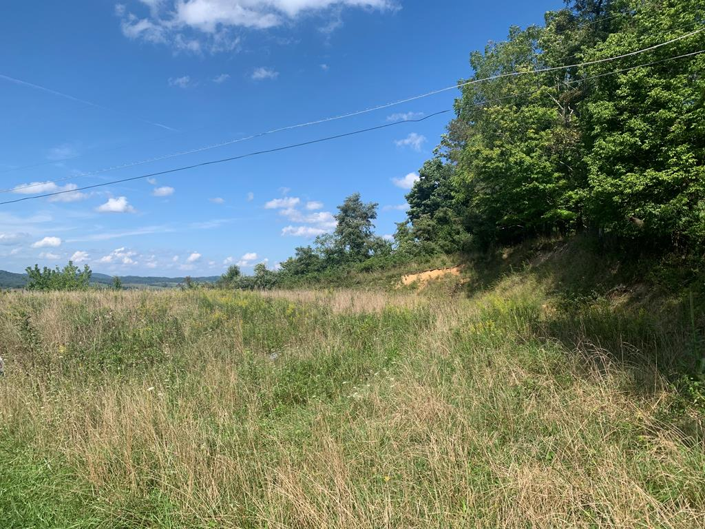 Nice mostly cleared lot perfect for building your dream home. Amazing views of Buckhorn Mountain. Convenient location to town and all amenities . Mostly cleared lot waiting for you to build your dream home!