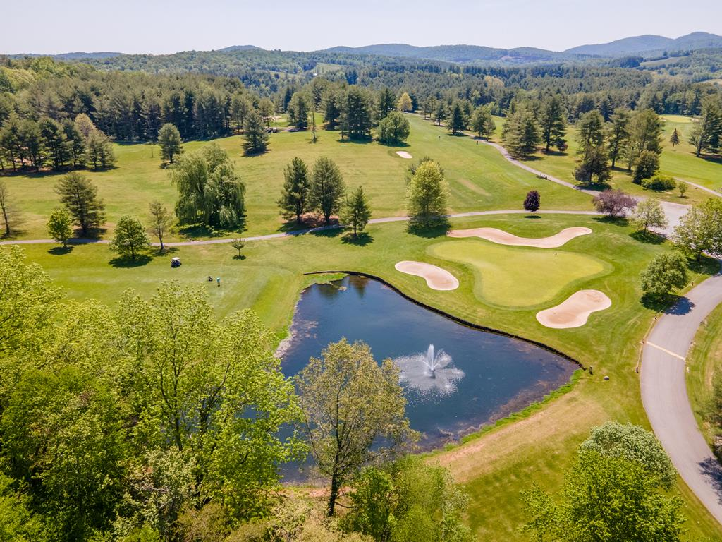 Amazing views over looking Great Oaks Country Club. Wooded tract with easy access off Floyd Highway. Property borders hole 18 / views of the clubhouse and 18th hole pond. Close to Town of Floyd. Multiple land tracts for sale, please call listing agents for more details.