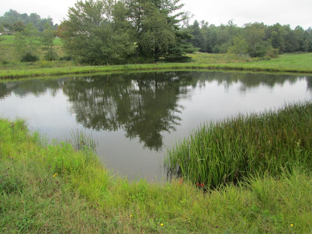 TBD Terry's Mill Rd, Laurel Fork, VA 24352