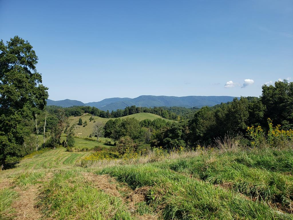 Beautiful mountain views from this 55.485 acre farm.  There are 2 drilled wells on the property one with pump which is operated by generator.  Two 2 ball waterers for livestock.  Excellent tree coverage area for livestock.  Entire property is fenced.  Must have 4x4 or SUV to access property.  Right of Way off Roxbury Lane up to property.