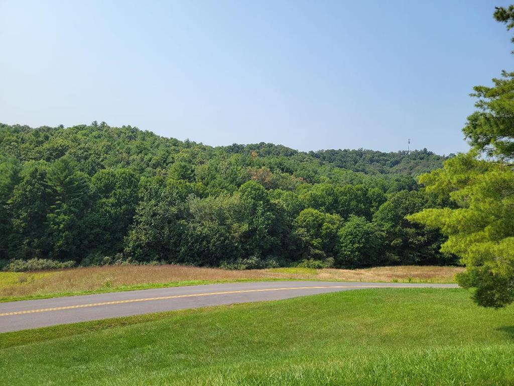 32+acres of mostly wooded land conveniently located minutes from Guynn's shopping center, Restaurant's and Schools in the town of Independence Va.