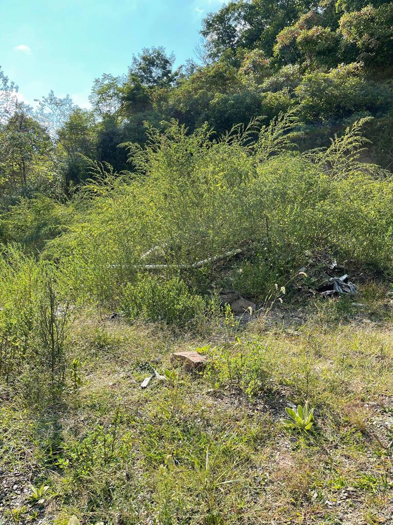 This is a perfect location to build a single family home, put in a modular or manufactured home. This property features 2.8 acres of land, already has a septic tank, well, public water and electricity access.